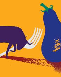 Vegetarianmeater