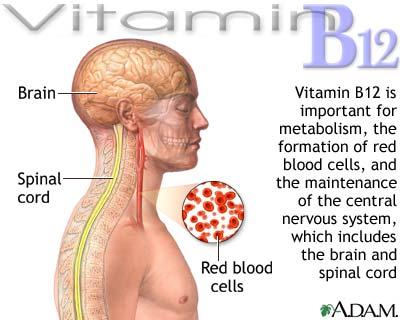 Vitamin-b12-benefits