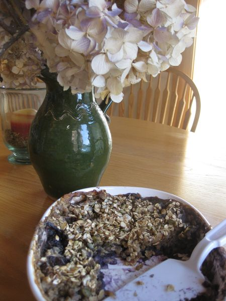 Blueberry, Banana, & Oat COmpany Breakfast Bake